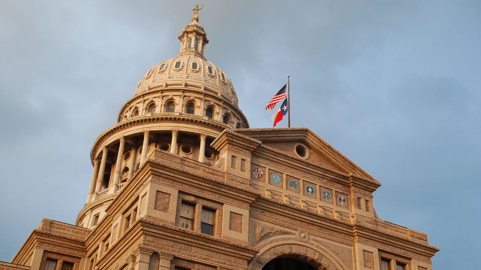 texas.gunowners.org